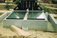 Chinese013